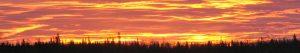 cropped-2011-12-26-boxing-day-sunrise.jpg