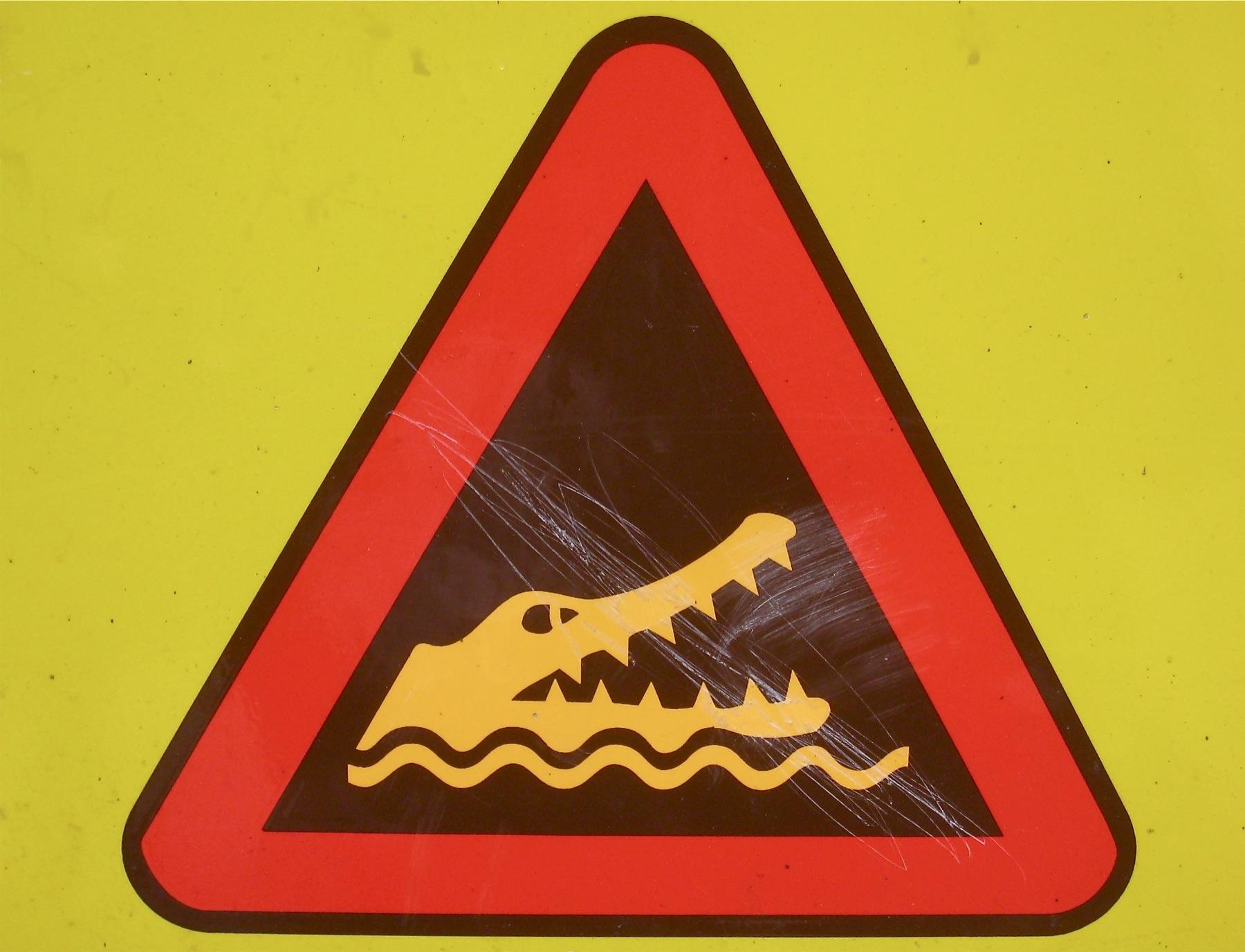 levine alan croc
